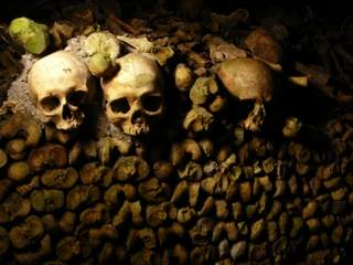 Catacombs skullery Paris