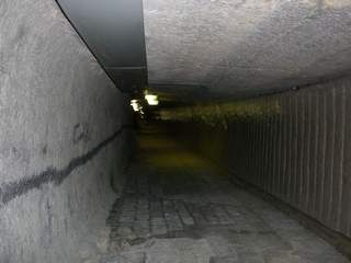 Boney tunnel